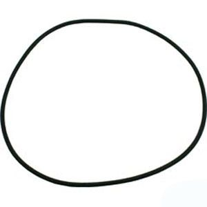 Pentair C-Series Pump Lid O-Ring - 071433