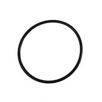 Pentair AMP-051-1231 - Pentair Eclipse / Meteor Filter Lid O-Ring 52000500