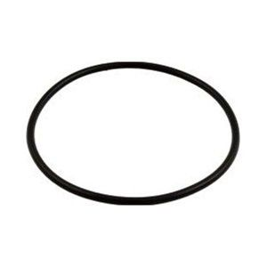 Hayward S200 / S240 / S160T Filter Lid O-Ring SX200Z6