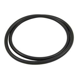 Hayward Star-Clear Plus Filter Head O-Ring CX900F