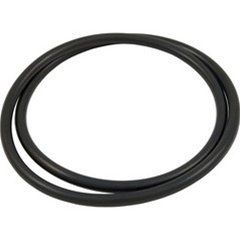 Hayward Star-Clear Plus Filter Head O-Ring CX900F - Generic