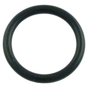 Pentair PAC-061-3049 - Pentiar Slide Valve O-Ring 273090 (2 Required)
