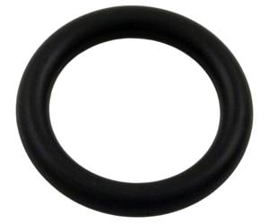 Pentair AquaLuminator Pool Light O-Ring 79116900