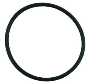 Pentair Challenger Strainer Pot Flange O-Ring 355330