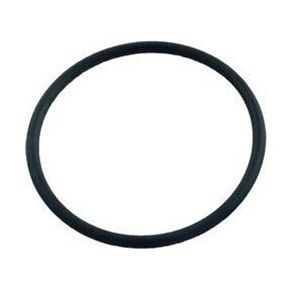 Pentair Clean &amp; Clear Plus / FNS Plus Bulkhead O-Ring 86006900