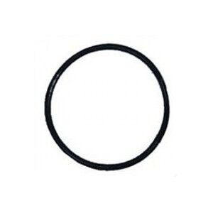 Pentair Clean &amp; Clear / Predator Union Nut O-Ring 071426