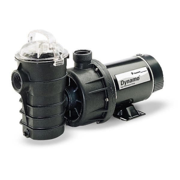 Pentair Dynamo 1 HP 2-Speed Pool Pump 340204