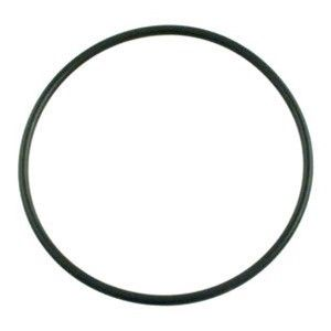Pentair Filter Valve Adapter O-Ring 154494