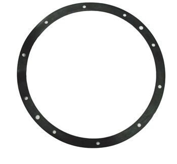 Pentair SPG-601-1001 - Pentair Gasket for 10 Hole Stainless Steel Light Niche 79200400