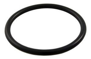 Pentair PAC-061-3050 - Pentair Bulkhead Adapter O-Ring 274494