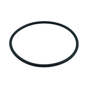 Pentair SPG-601-1126 -2 - Pentair Dynamo Pump Lid O-Ring 354533