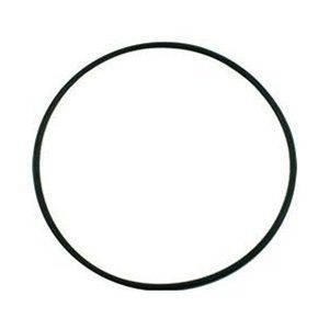 Pentair SuperFlo / Sta-Rite SuperMax Seal Plate O-Ring 355619