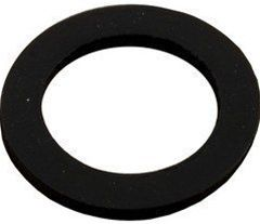 Pentair Sand Dollar Sand Drain Gasket 154713