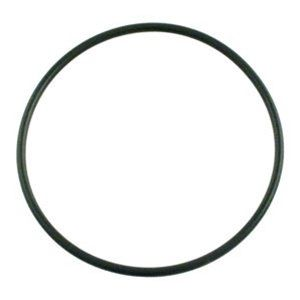 Pentair Triton II / Tagelus Sand Filter 6 Inch Lid O-Ring 154493