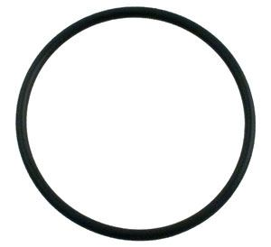Pentair Ultra-Flow Diffuser Gasket 39006600
