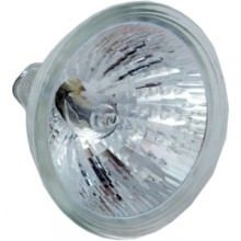 Pentair SAM Light Bulb 75W Halogen 12V 2 Pin