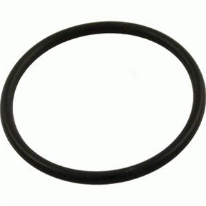 Sta-Rite Max-E-Glas / Dura-Glas Diffuser O-Ring U9-226
