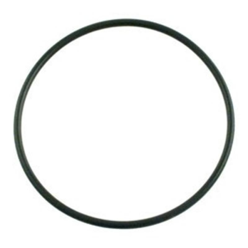 Pentair 154493 Sand Filter 6 Inch Lid O Rings On Sale At