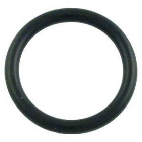 Pentair 273090 Valve O-Ring
