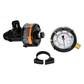 Pentair Filter Manual Air Relief Valve Assembly 98209800