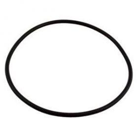 Sta-Rite Max-E-Glas II / Max-E-Pro / Dura-Glas Seal Plate O-Ring U9-228A