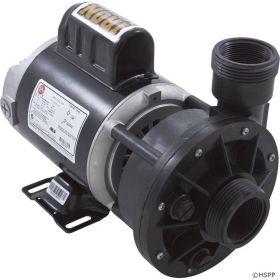 Waterway 3410030-1E Iron Might Pump