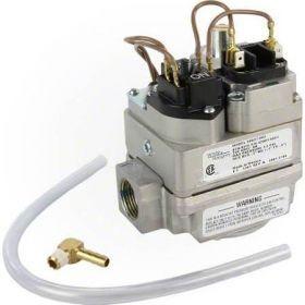 Pentair MasterTemp - Sta-Rite Max-E-Therm Combination Gas Control Valve Kit 42001-0051S