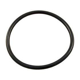Hayward SX200Z4 O-Ring
