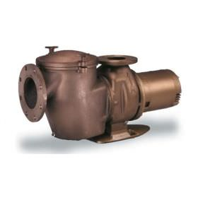 Pentair 011654 C-Series 10 HP Commercial Pool Pump