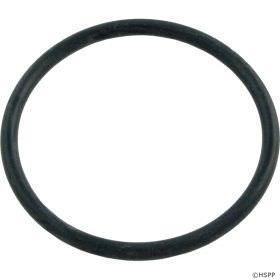Pentair 155064 Standpipe O-Ring
