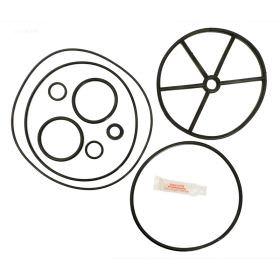 Pentair 261055 Valve Repair Kit