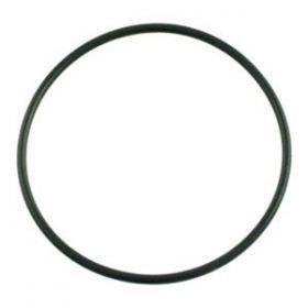 Pentair 272541 Tagelus Valve Body O-Ring