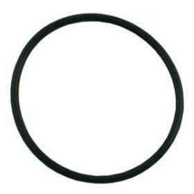 Pentair Challenger Strainer Pot Flange O-Ring 355330