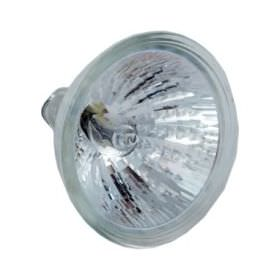 Pool & Spa 75W Halogen 12V Light Bulb 2 Pin