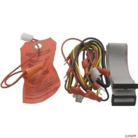 Jandy R0366600 Wire HARNESS, Temp/Ignition Control