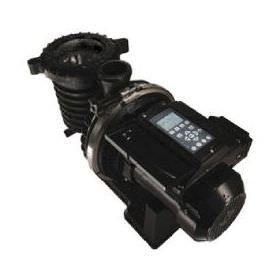 Sta-Rite IntelliPro Variable Speed Pool Pump P6E6VS4H-209L