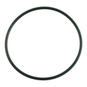 Sta-Rite Max-E-Glas and Dura-Glas Lid O-Ring U9-229 - Generic