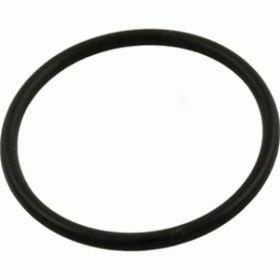 Sta-Rite Max-E-Glas / Dura-Glas Diffuser O-Ring U9-226