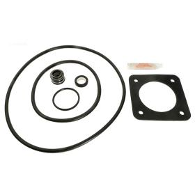 Sta-Rite Max-E-Glas Dura-Glas Repair Kit - Go-Kit 6 - (Prior to 1998)