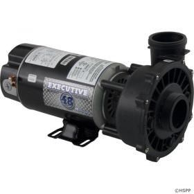 Waterway Executive 1.5 HP 2-Speed 115V Spa Pump