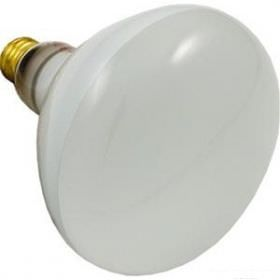 Halco Pool Light R40 Bulb 500W 120V