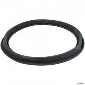 Hayward ECX1105 DE Filter Diaphragm Gasket