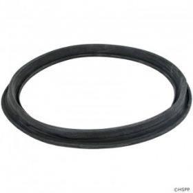 Hayward ECX1105 DE Filter Diaphragm Gasket