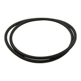 Hayward XStream Filter Tank O-Ring CCX1000G
