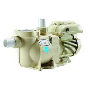 Pentair 342001 SuperFlo Variable Speed Pump