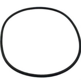 Pentair 351446 Seal Plate O-Ring for WhisperFlo XF