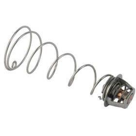 Pentair 460924 Regulator Kit for MasterTemp Heater
