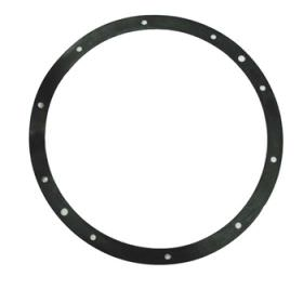 Pentair Gasket for 10 Hole Stainless Steel Light Niche 79200400