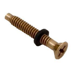 Pentair Light Brass Pilot Screw with Washer 79104800