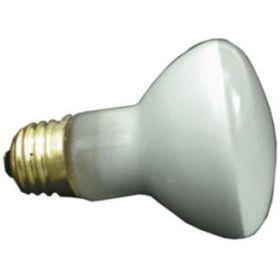 Pool & Spa 100 Watt Short Flood Light Bulb R20